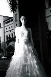 Photographer Susan Buzzi